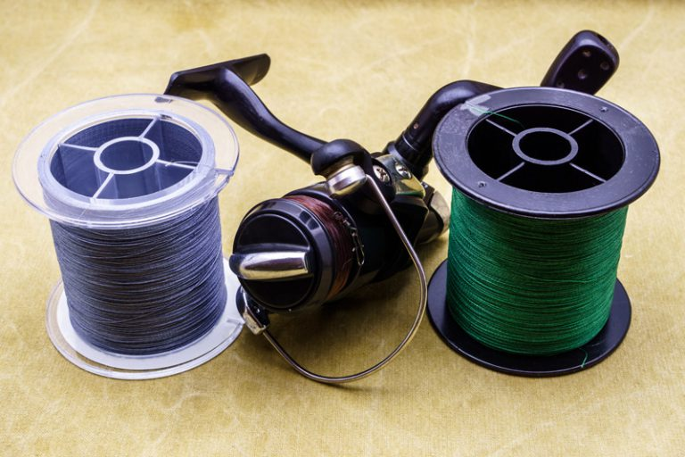 braided line for bass2