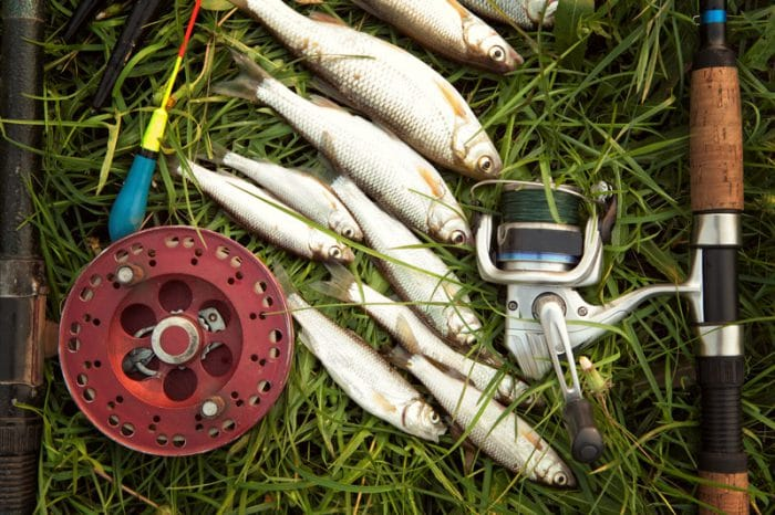 sweet water fishing reels