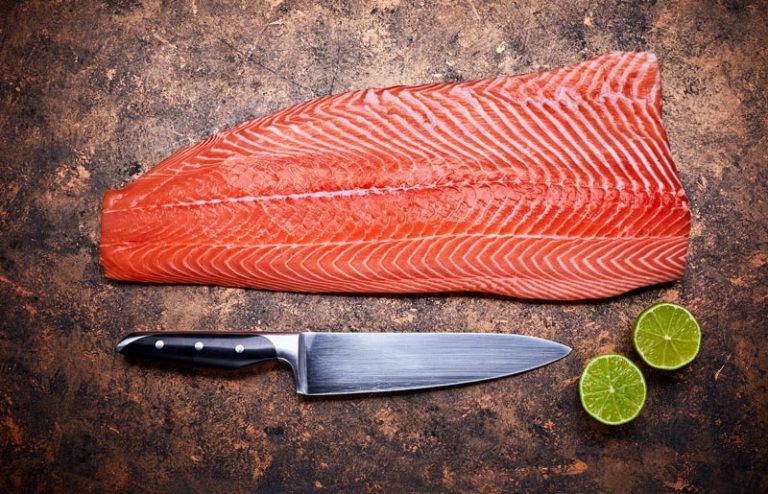 Best Salmon Fillet knives