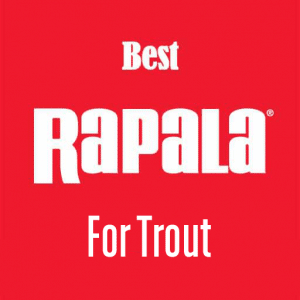 best rapala for trout
